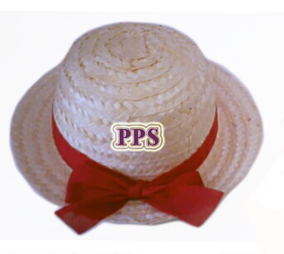 PS-DomeHat-1