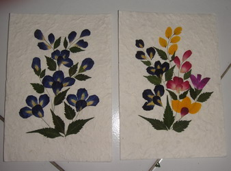Dried Flower Greeting Card