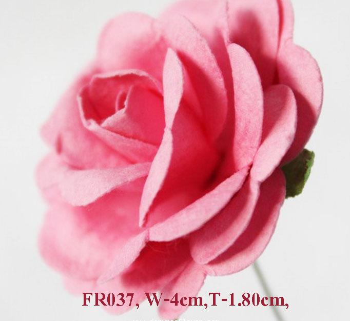 PS-RoseFR037-1