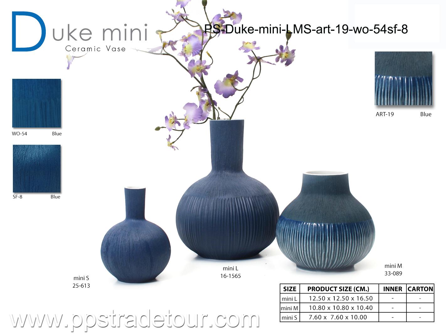 PSCV-Duke-mini-LMS-ART-19-WO-54SF-8