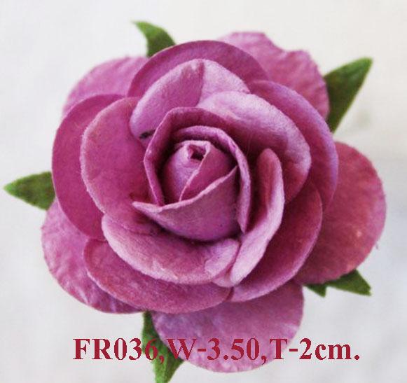 PS-RoseFR036-1