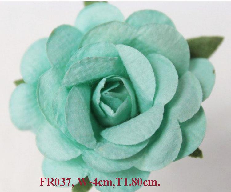PS-RoseFR037