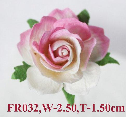 PS-RoseFR032