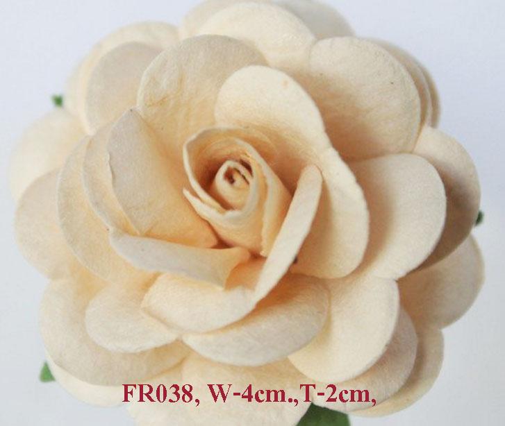 PS-RoseFR038