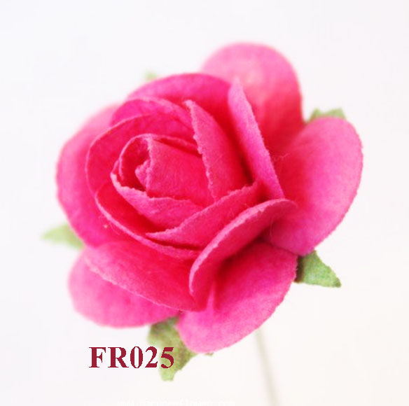 PS-RoseFR025