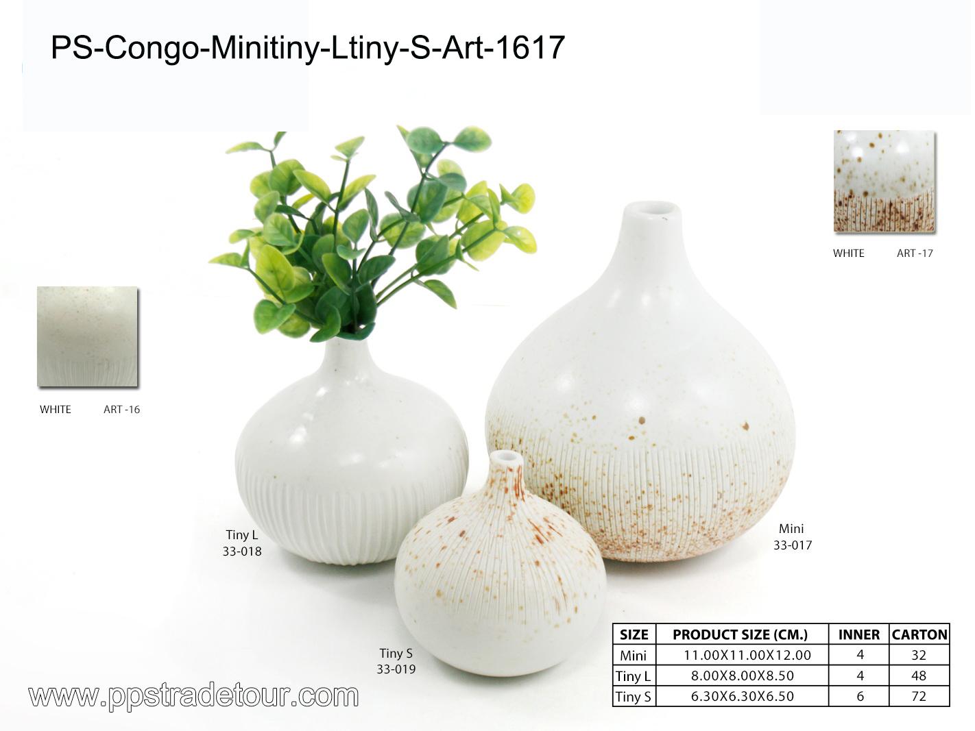 PSCV-CONGO-MINITINY-LTINY-S-ART-1617