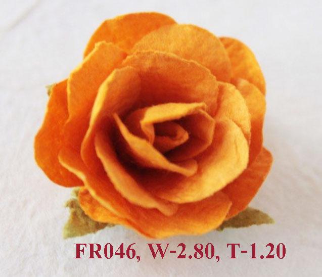 PS-RoseFR046