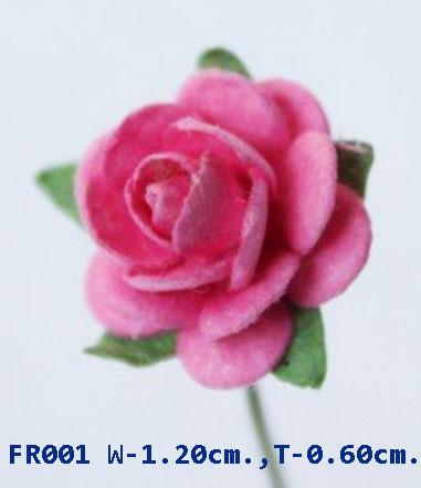 PS-RoseFR001