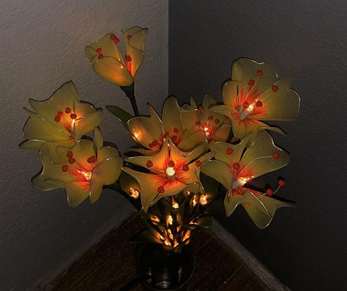 Flower Lights-8