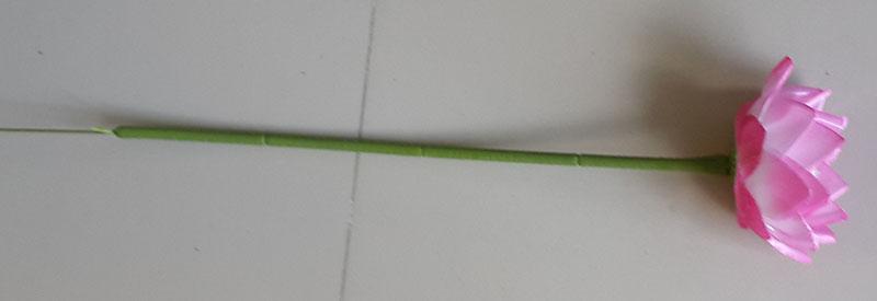 SatinFlower-F56-1621