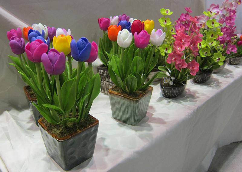 Tulip_3655-1