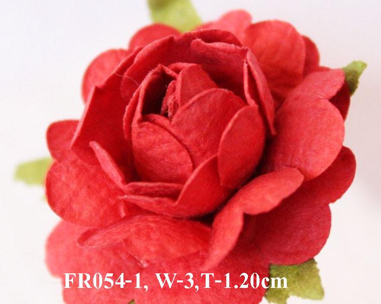 PS-RoseFR054-1
