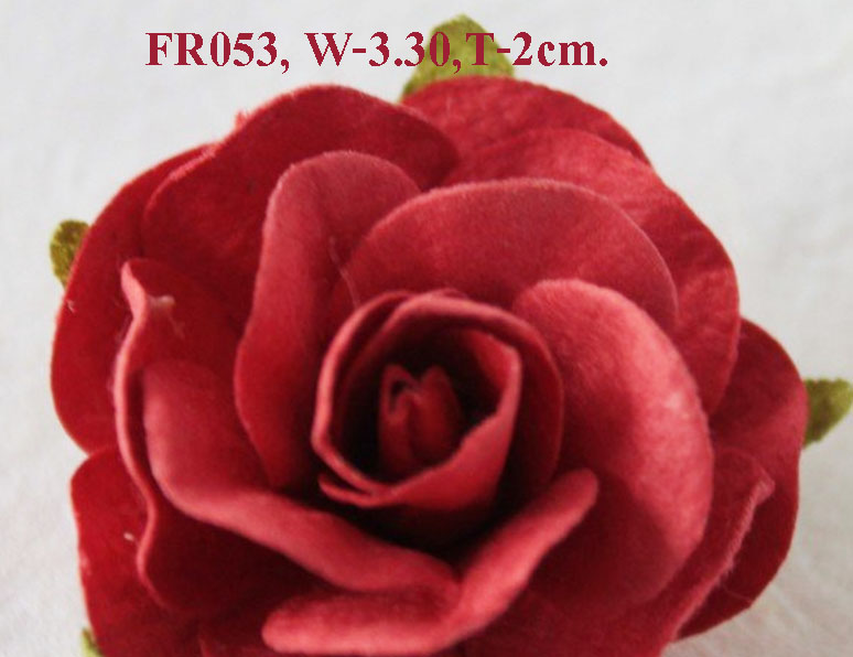 PS-RoseFR053-1