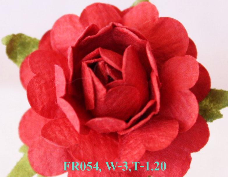 PS-RoseFR054