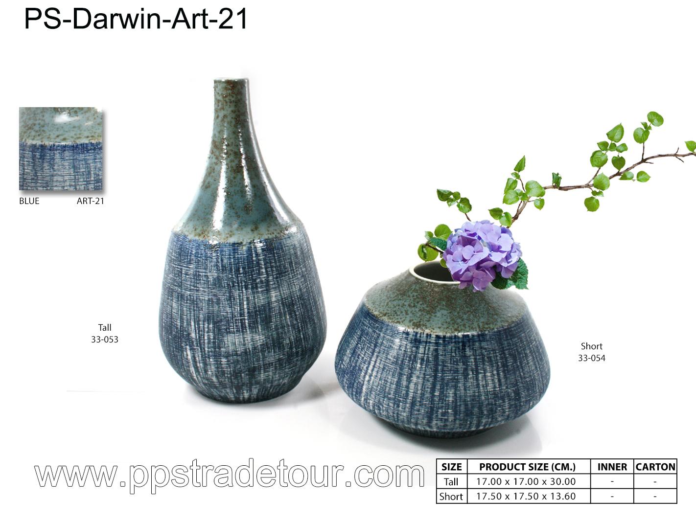 PSCV-Darwin-Art-21
