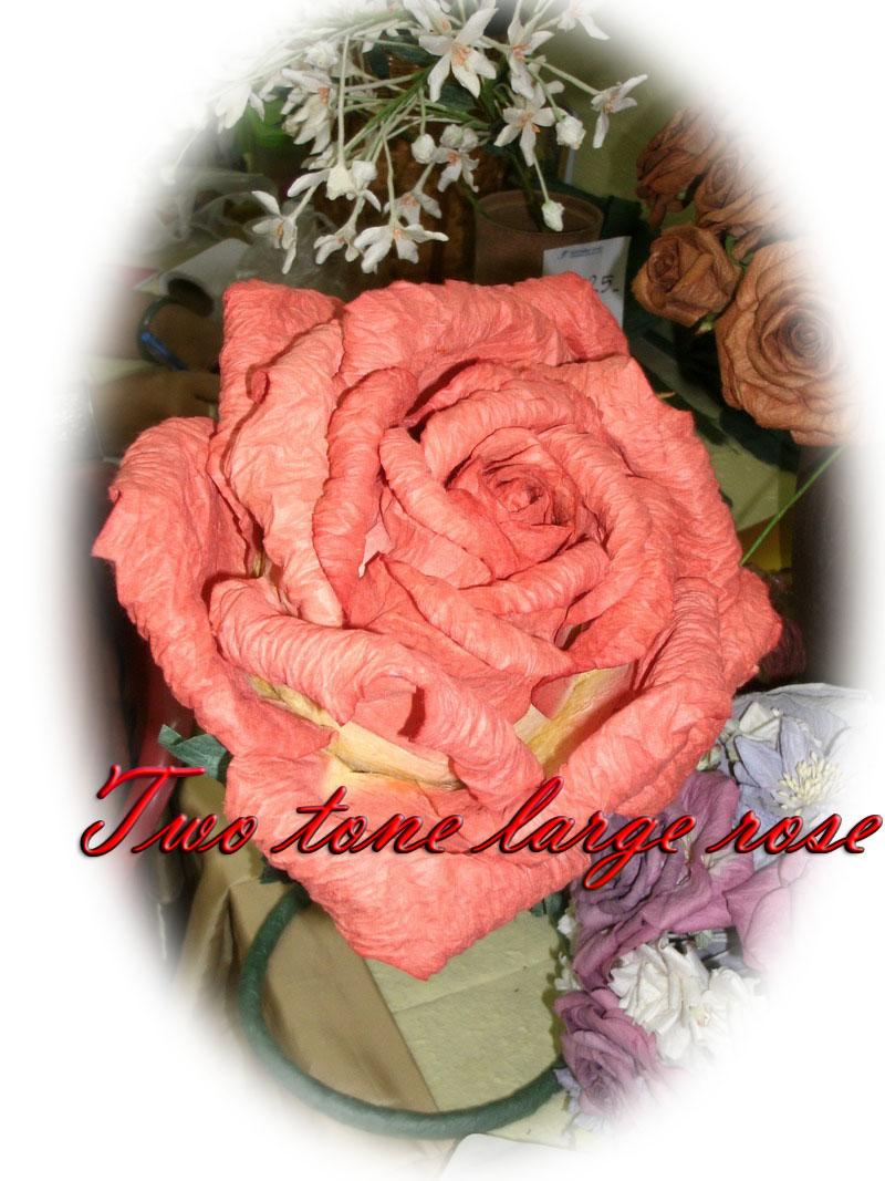 Giant Rose-31
