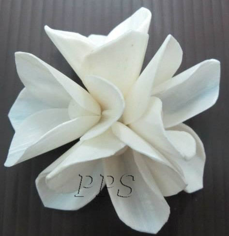 Sola Flower diffuser 143 (28)