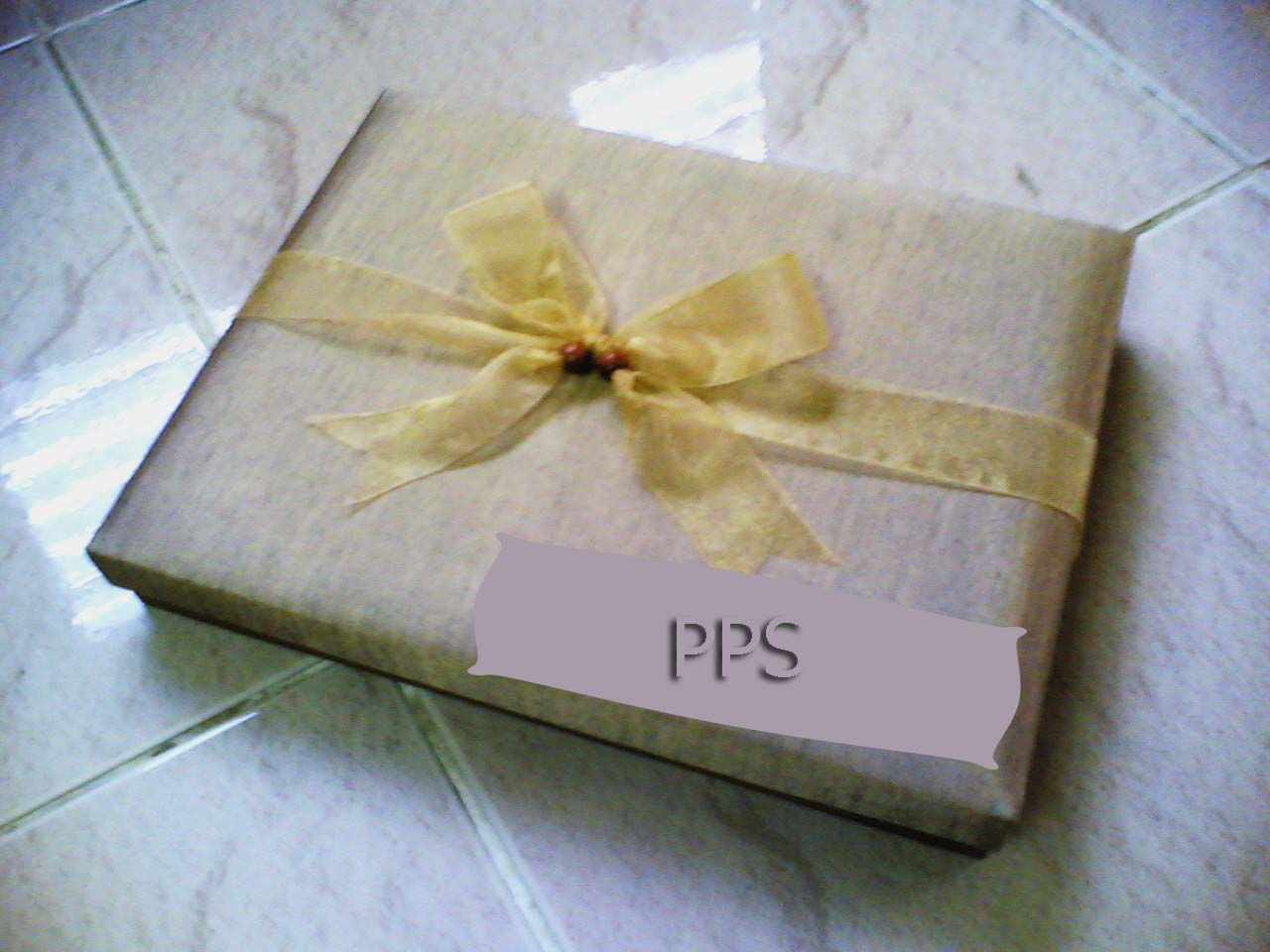 Accessories box- PPS-31
