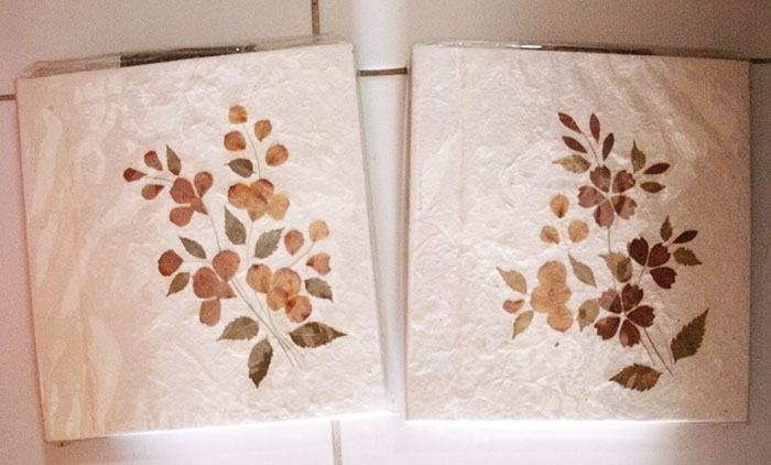 Mulberry paper picture