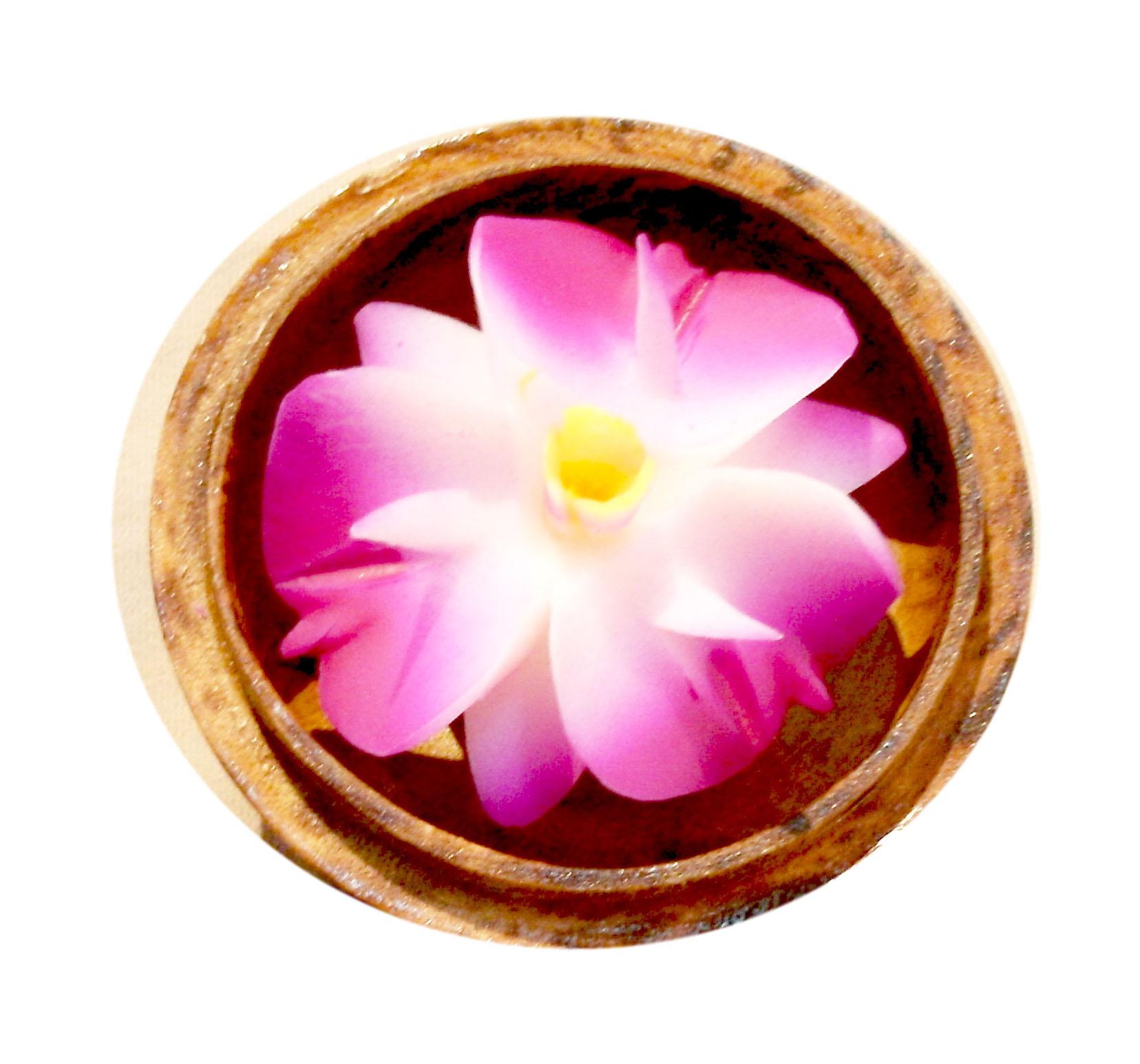 Soap Flower 80-1