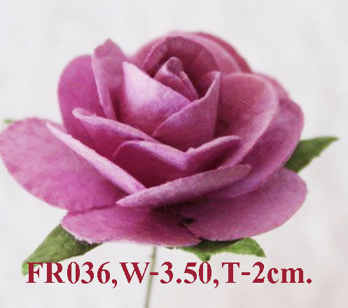 PS-RoseFR036
