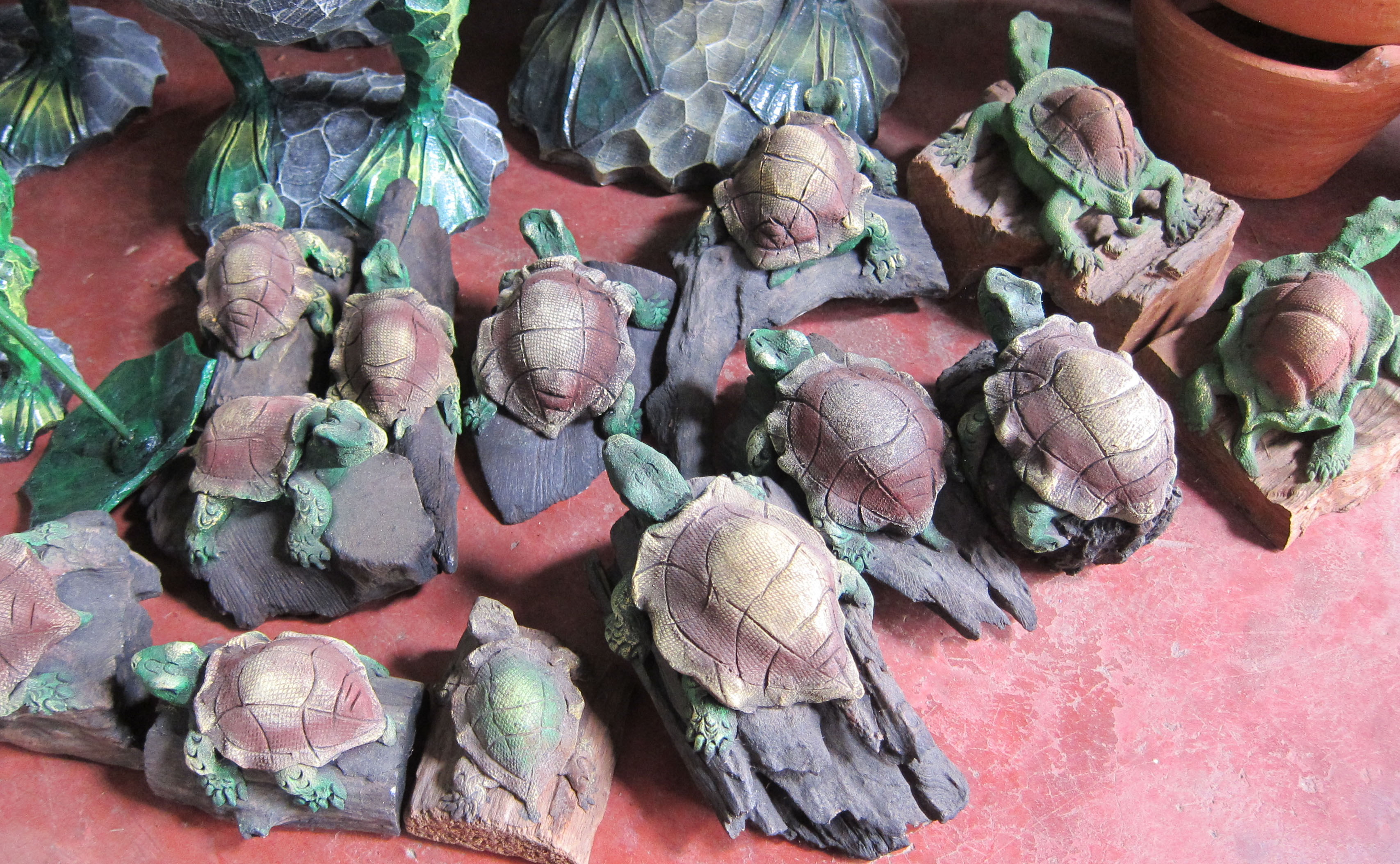 Turtle-sawdust