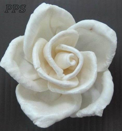 Sola Flowerdiffuser 143 (38)