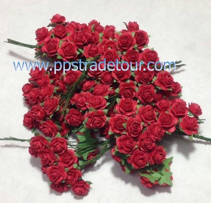 rose-124395