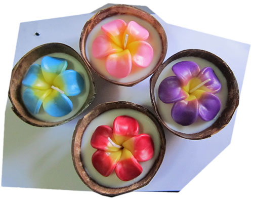 Flower candle in coconut shell bowl-12-W