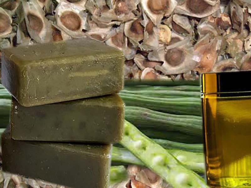 Moringa Oil Soap