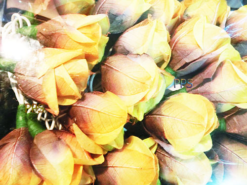 Leaf-Paper-Flower-String-Lights 05-1