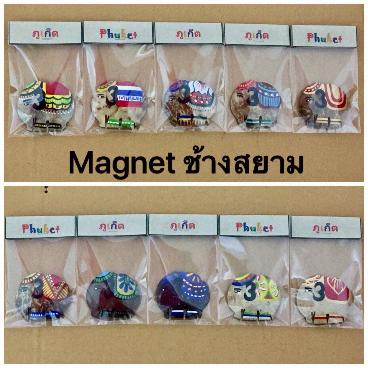 Elephant Shape Magnet-11