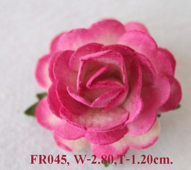 PS-RoseFR045