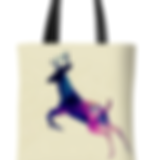 Eco Shopping Bag.png