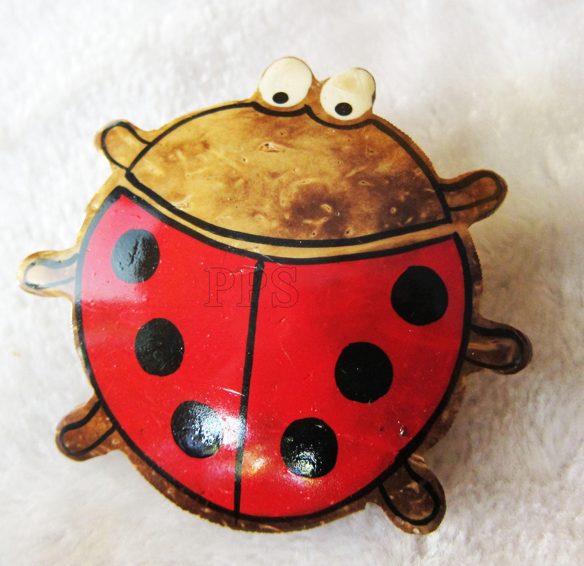 Coconut Ladybug_2648