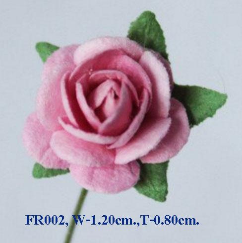 PS-RoseFR002