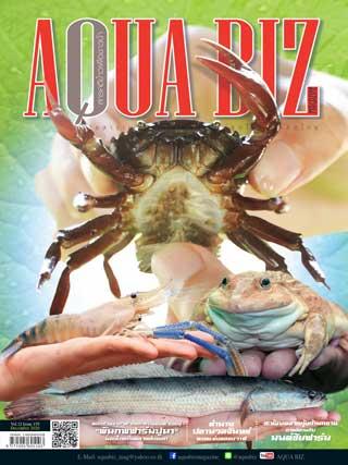 AQUABIZ/aqua-biz-december-2020