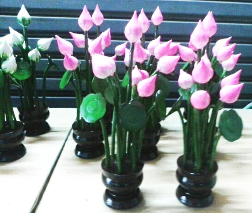 Pink wood lotus