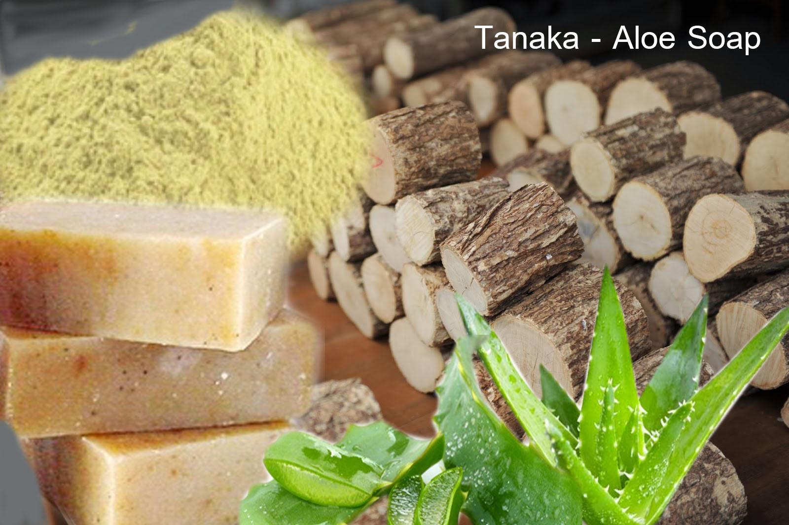tanaka-Aloe-Soap