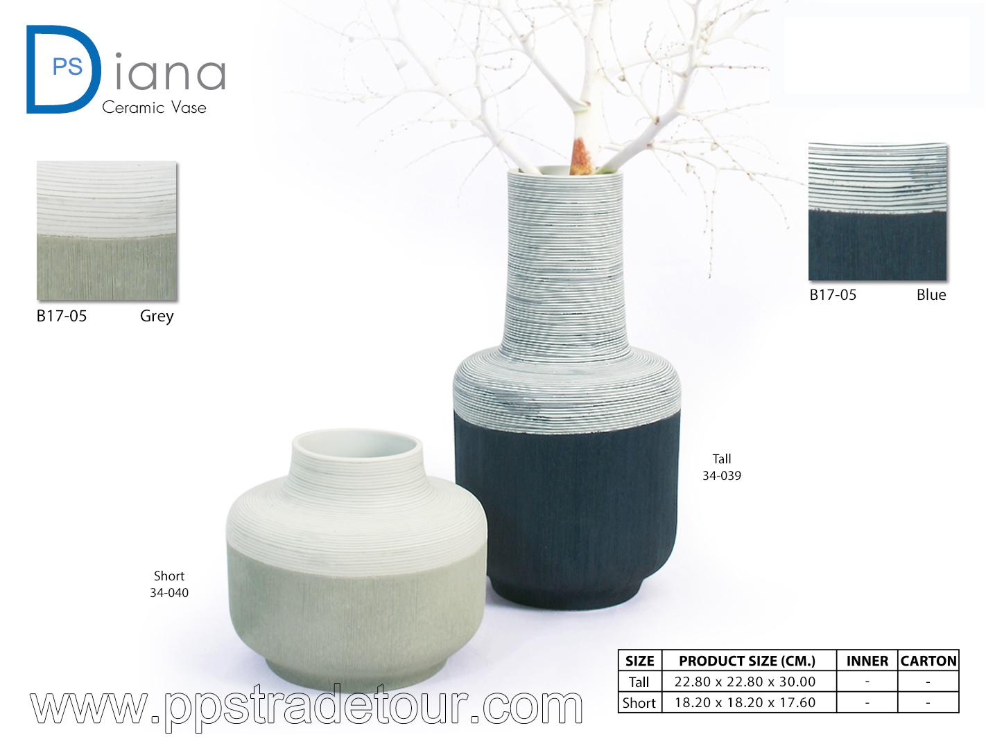 PSCV-Diana-B17-05-Blue-grey
