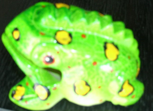 FrogFancyColorNo.203