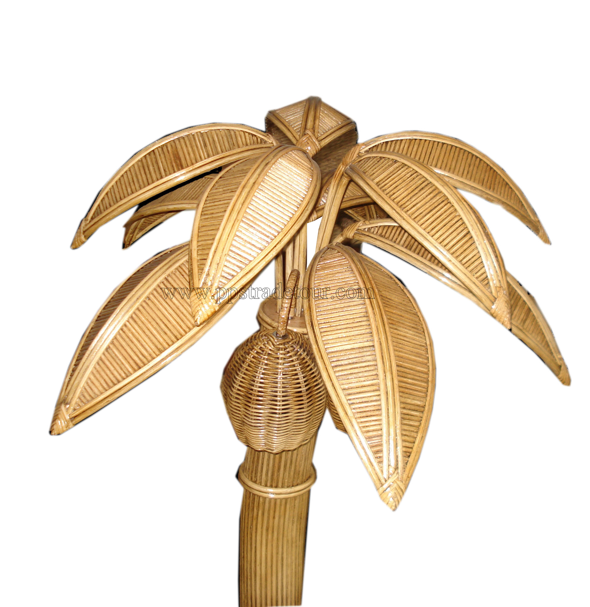 palmtree11