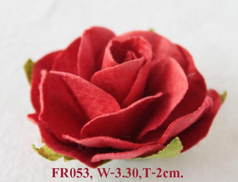 PS-RoseFR053