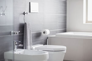 Drop The Mop- Property Landlords cleaning service ofa bathroom