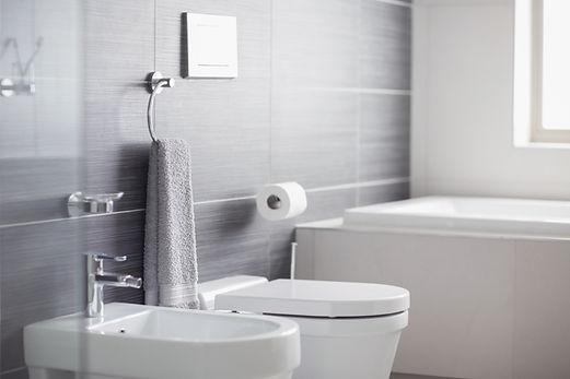 Blocked Bathroom Toilet