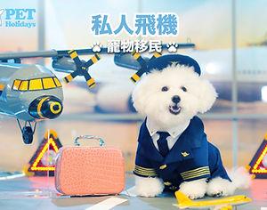 3. 私人飛機寵物移民.jpg
