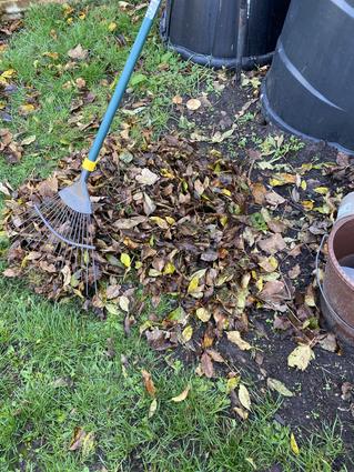 Homeschool Garden Club - last little jobs