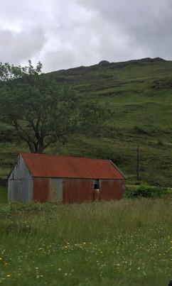 Landscape (11)