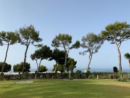 Landscape (19)