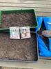 Homeschool Garden Club - The First Sowing of the Year